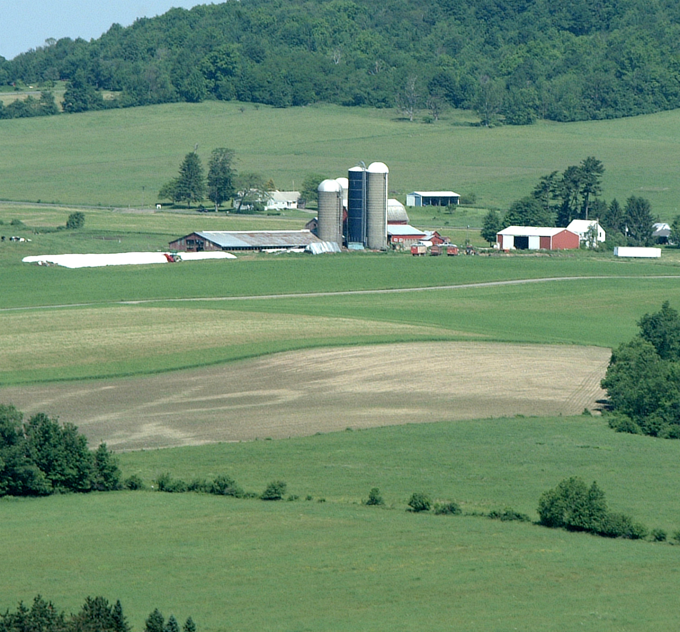 FarmScene002.jpg