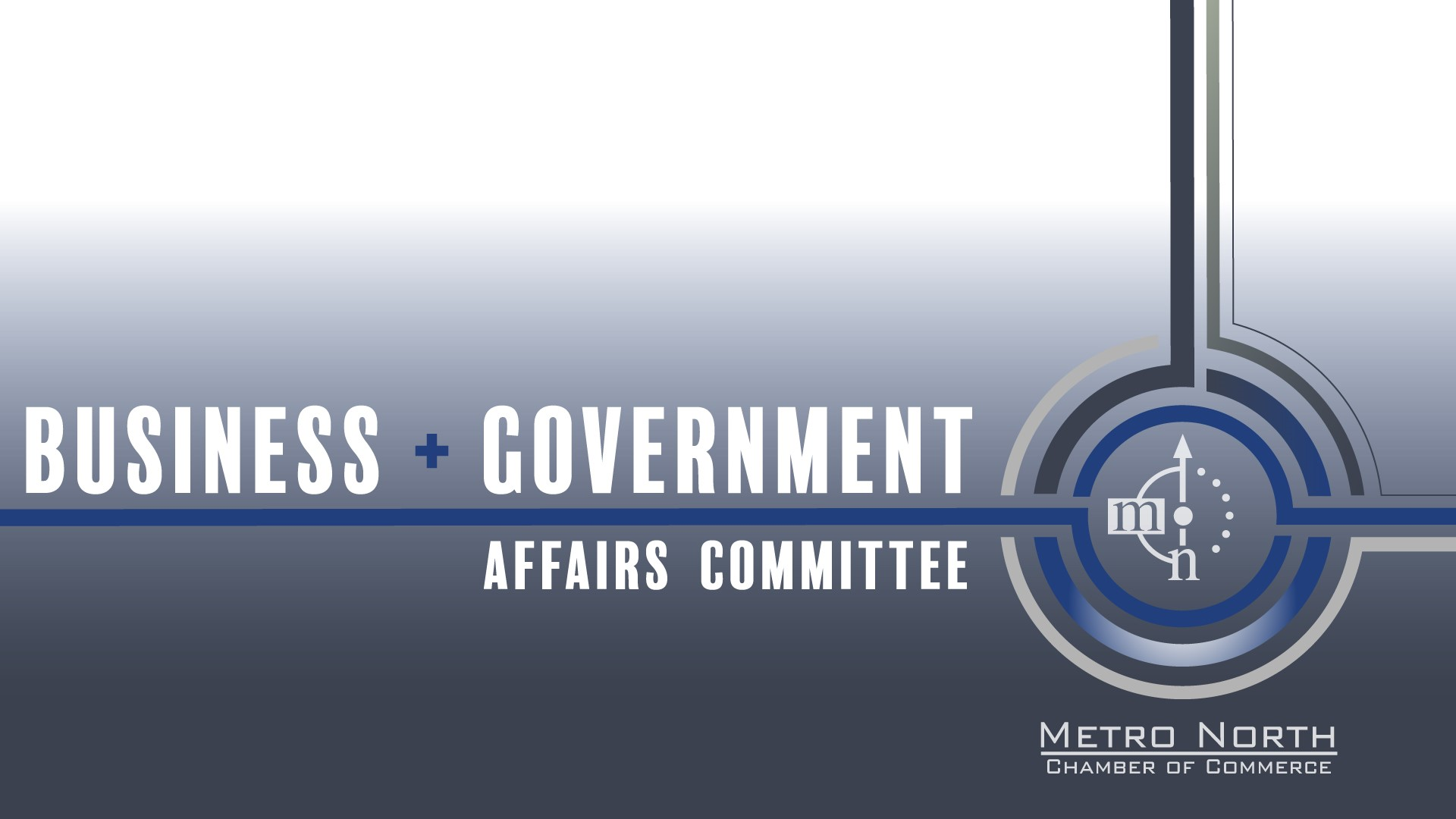 Center for Business Advocacy Government Affairs Committee and Steering Committees