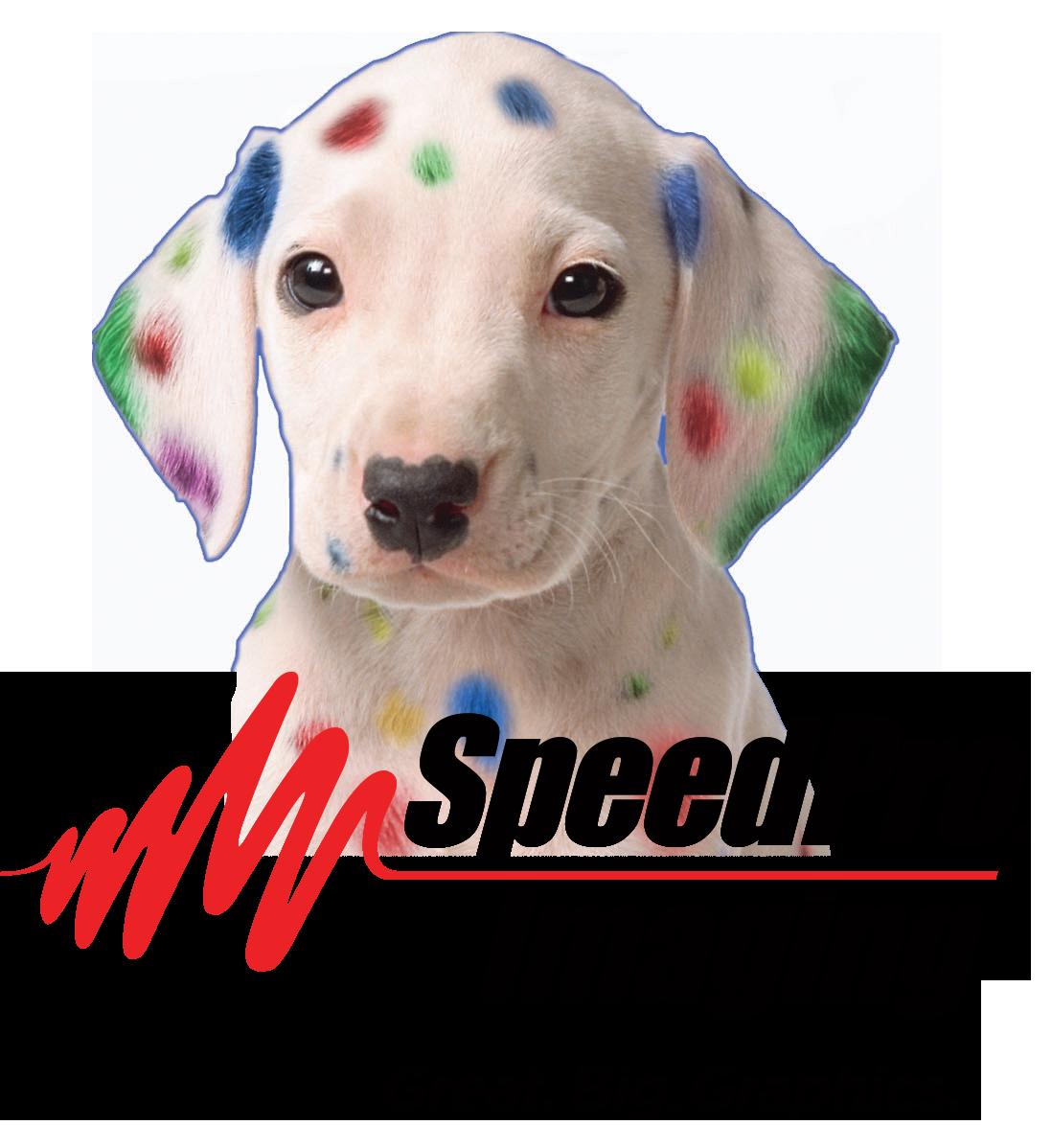SpeedPro-logo.png