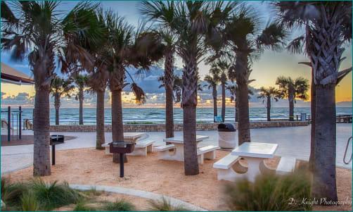 beach3-w320.jpg