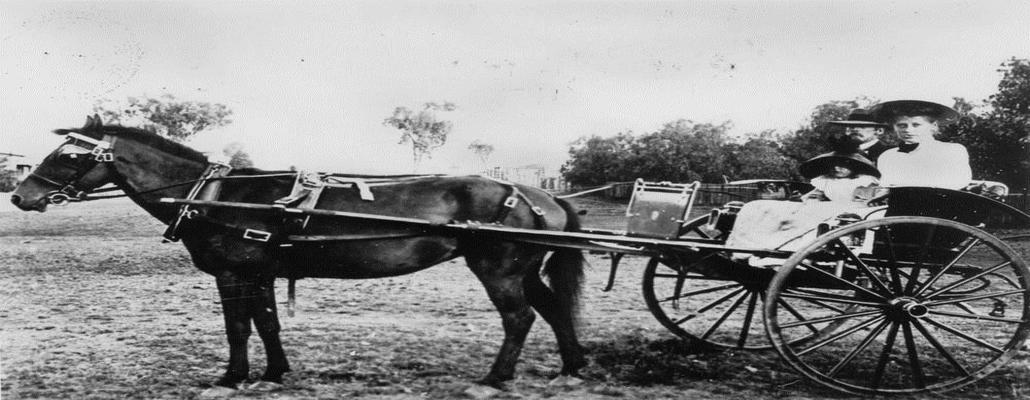 horse--and-buggy-old-w1030.jpg