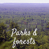 Parks and Forests.jpg