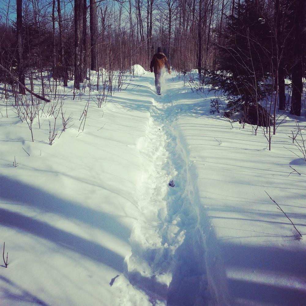 snowshoe-2-w1000.jpg