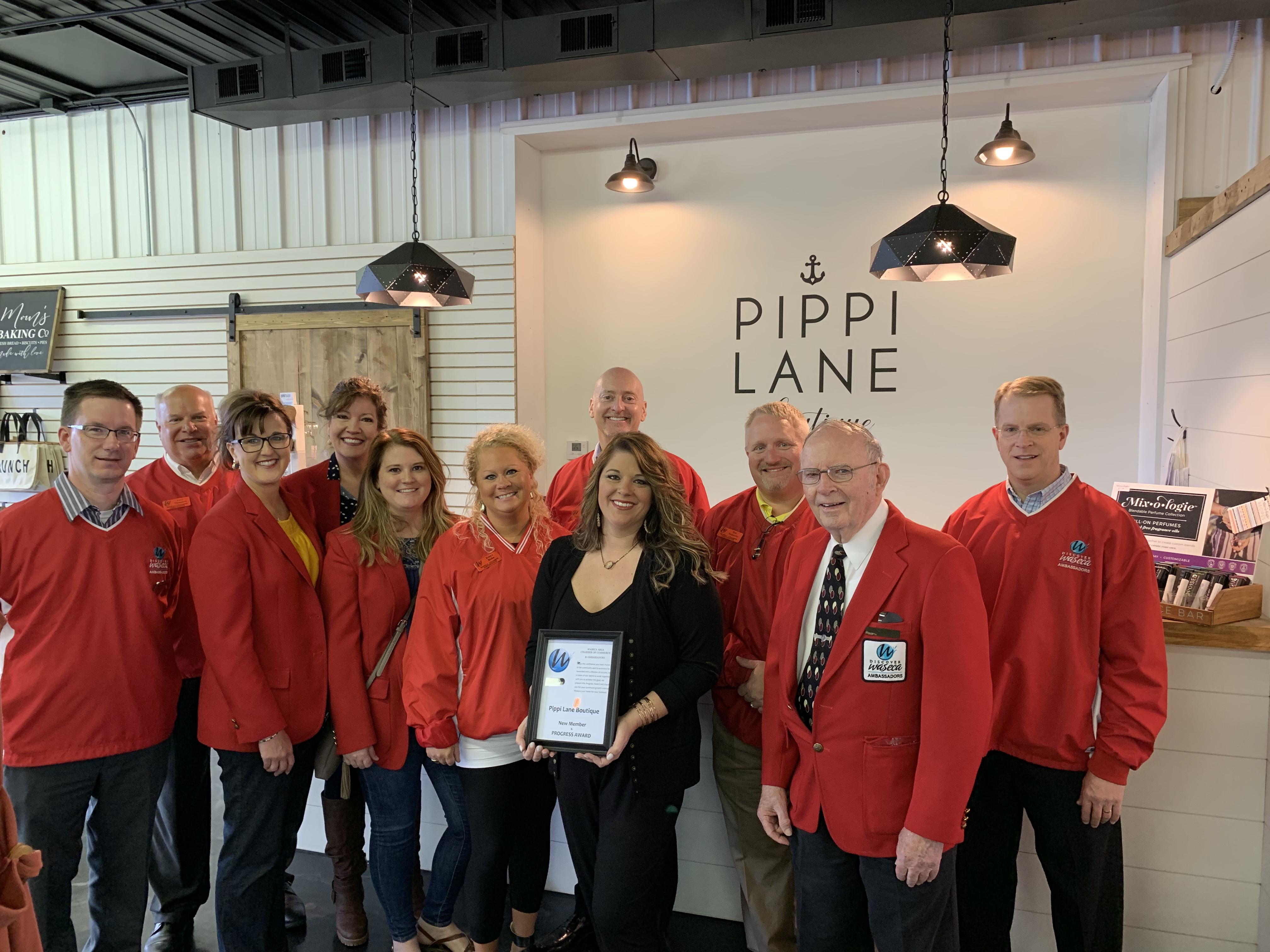 Pippi-Lane-Progress-and-New-Member-May-2019.jpg