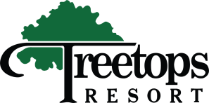 treetops-small(1).jpg