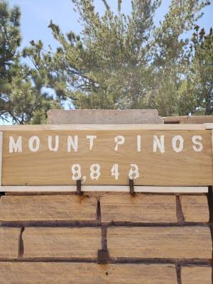 Lisa-L.-at-Mt-Pinos-w300.jpg
