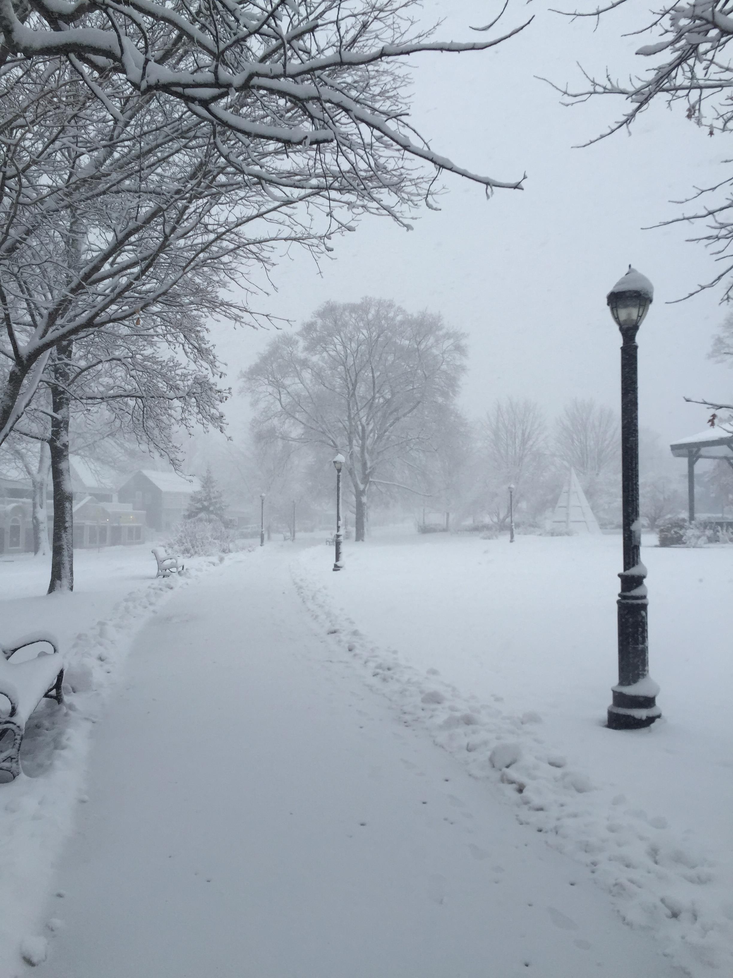 Bar Harbor Village Green in Winter