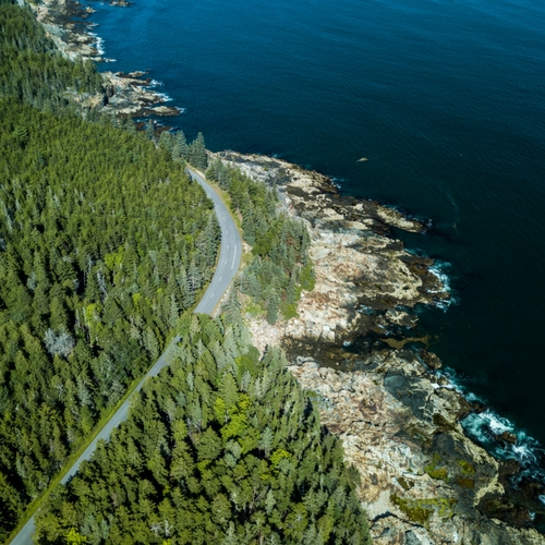 Drive the scenic Park Loop Road through Acadia National Park in Bar Harbor Maine