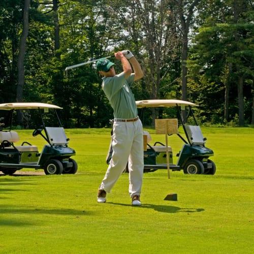 Golf-Scene-w500.jpg