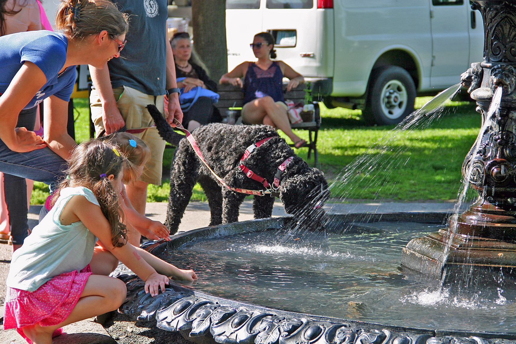 Leb-fountain-dog.JPG