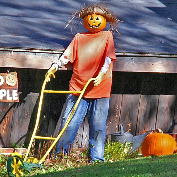 Plainfield-Pumpkin-People2.jpg