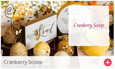 Cranberry-Scoop.png