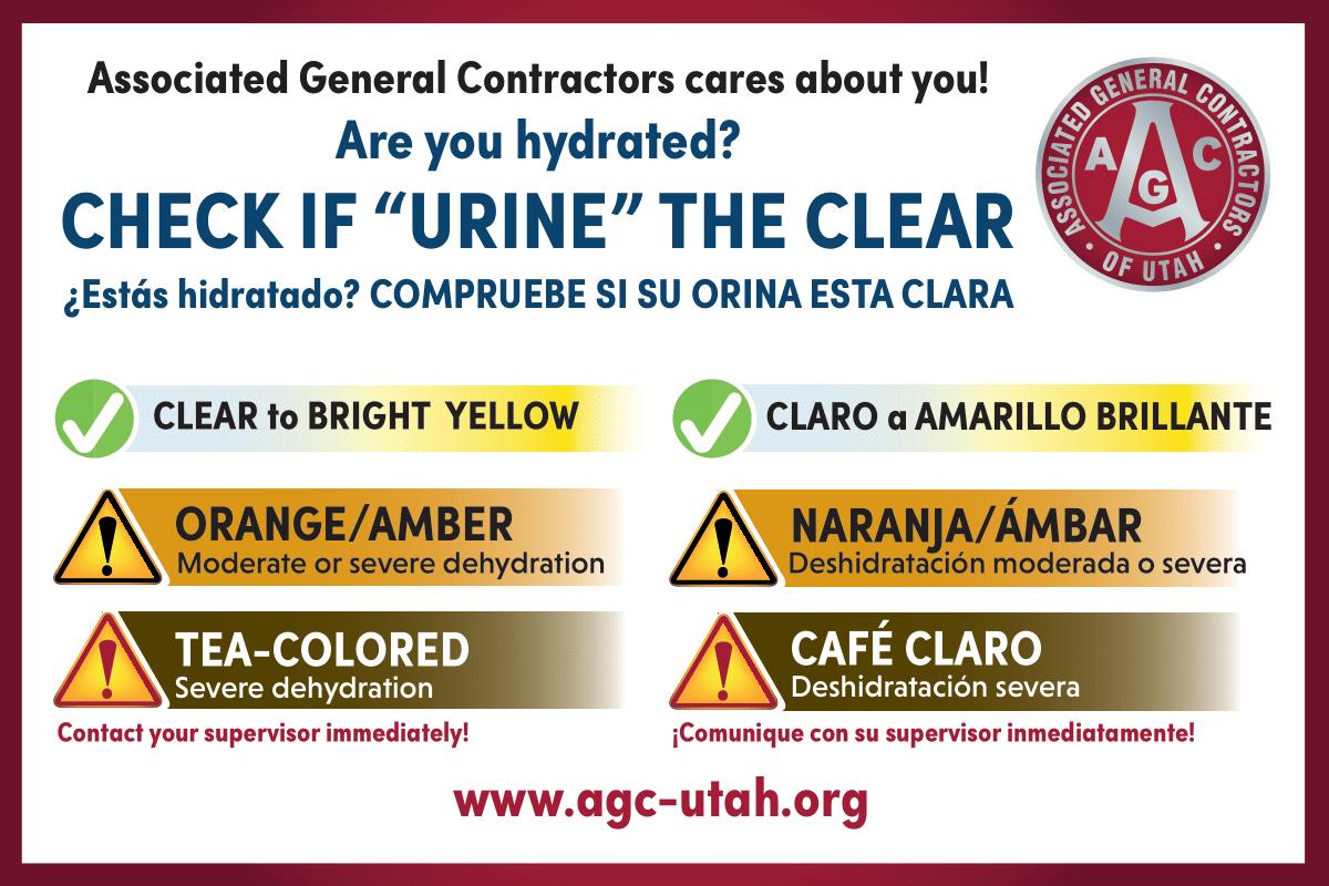Dehydration Urine Chart Sticker