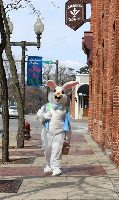 Easter-Bunny-Dwntwn.jpg