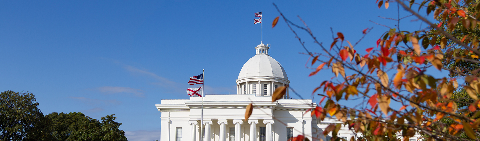 Downtown, Montgomery State Capitol, Montgomery Area Chamber of Commerce, Montgomery Chamber, MGMChamber
