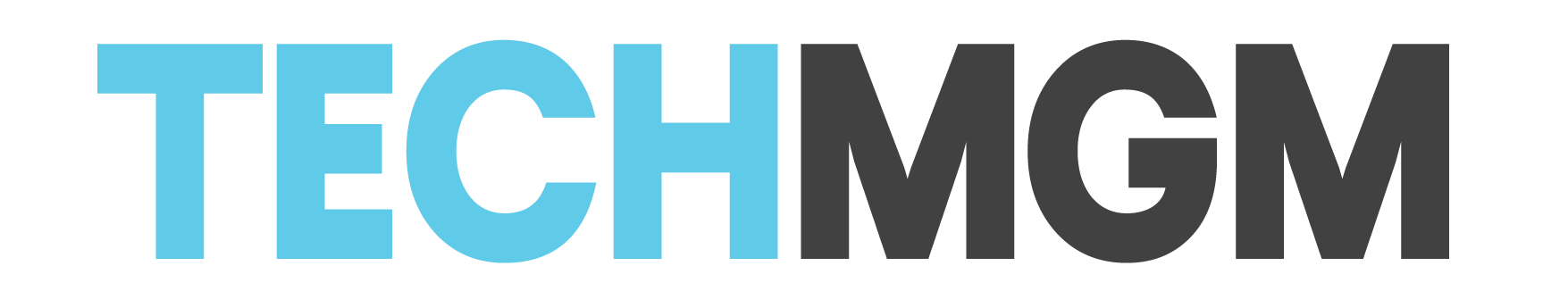 TechMGM-logo---teal-and-grey.png