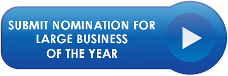 Large Business of the Year Nomination Form