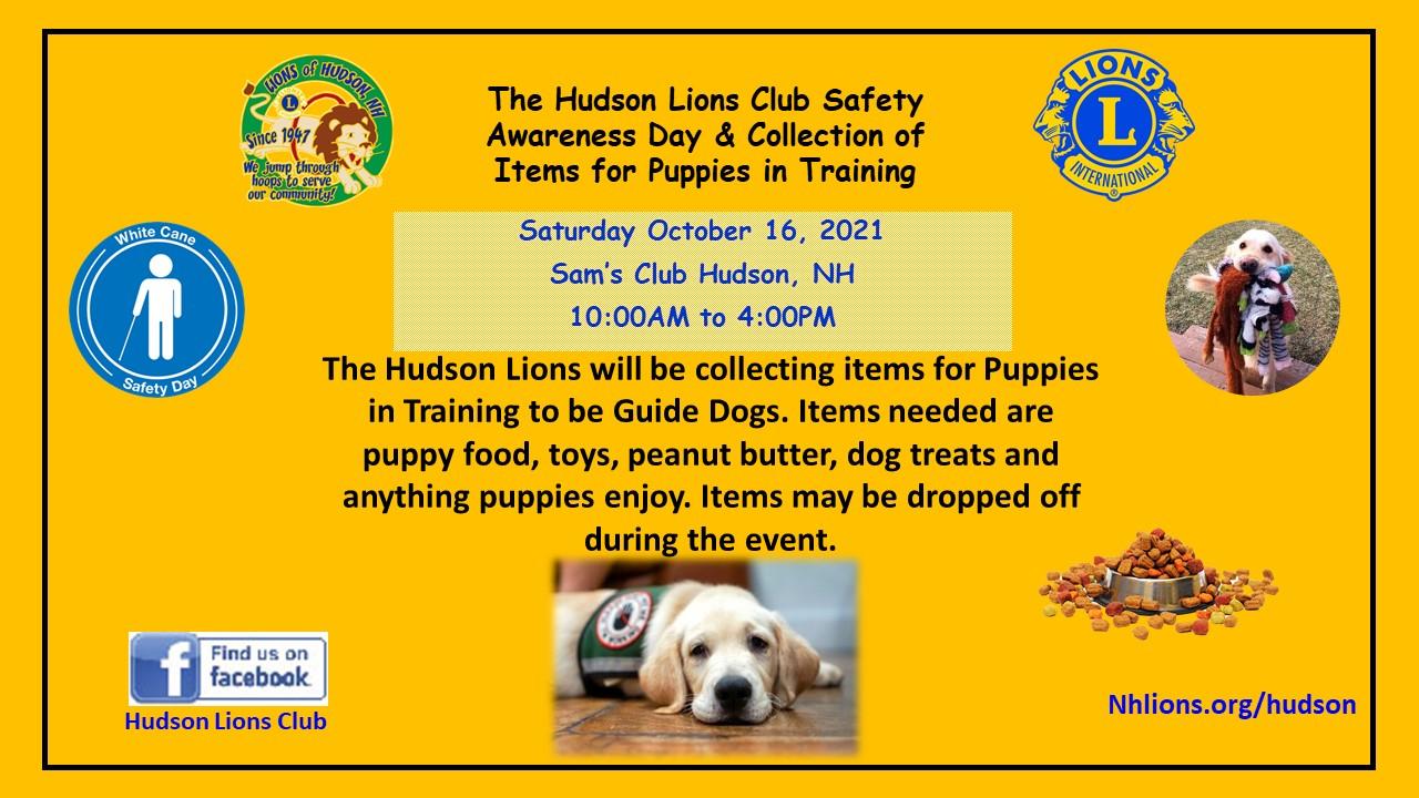 Hudson Lions White Cane Awareness Day