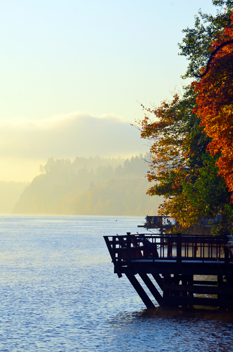 Fall-Colors-on-Deck-on-Water.jpg