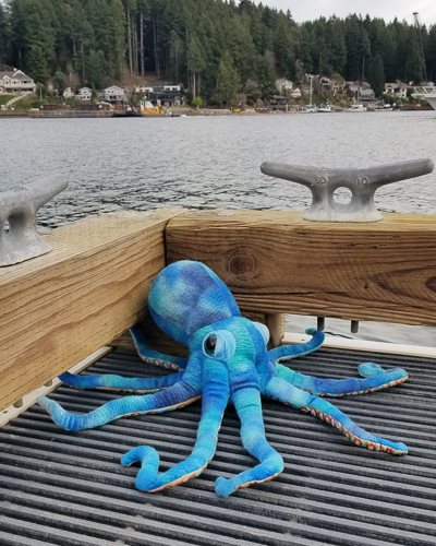 Octopus-on-dock-4-2.jpg