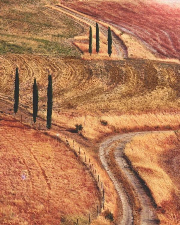Tuscan farmland