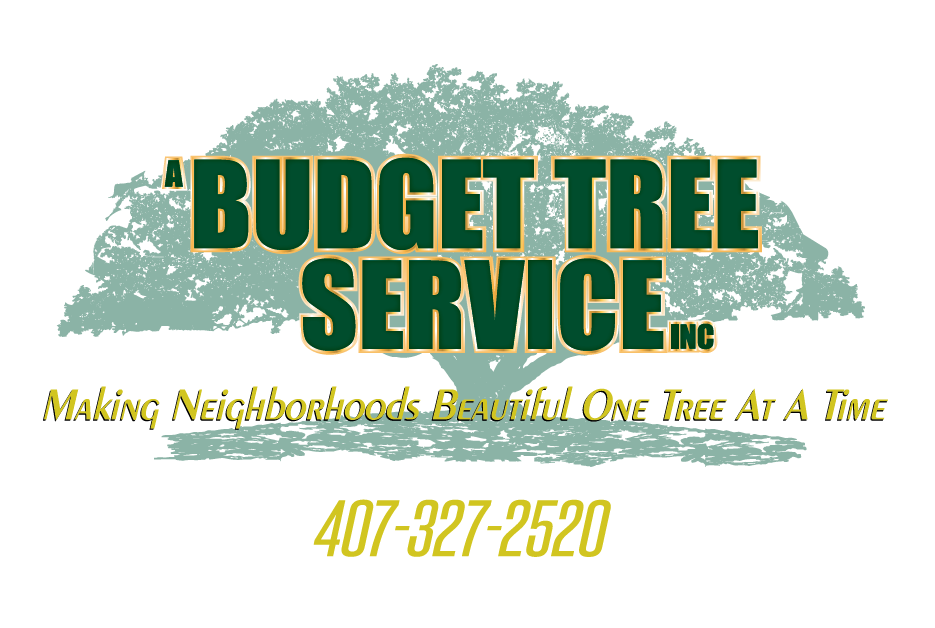 budget-tree-service.png