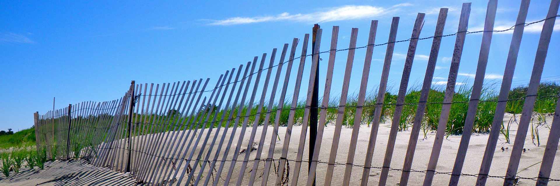 beach-fence-Spencer-Roy.jpg
