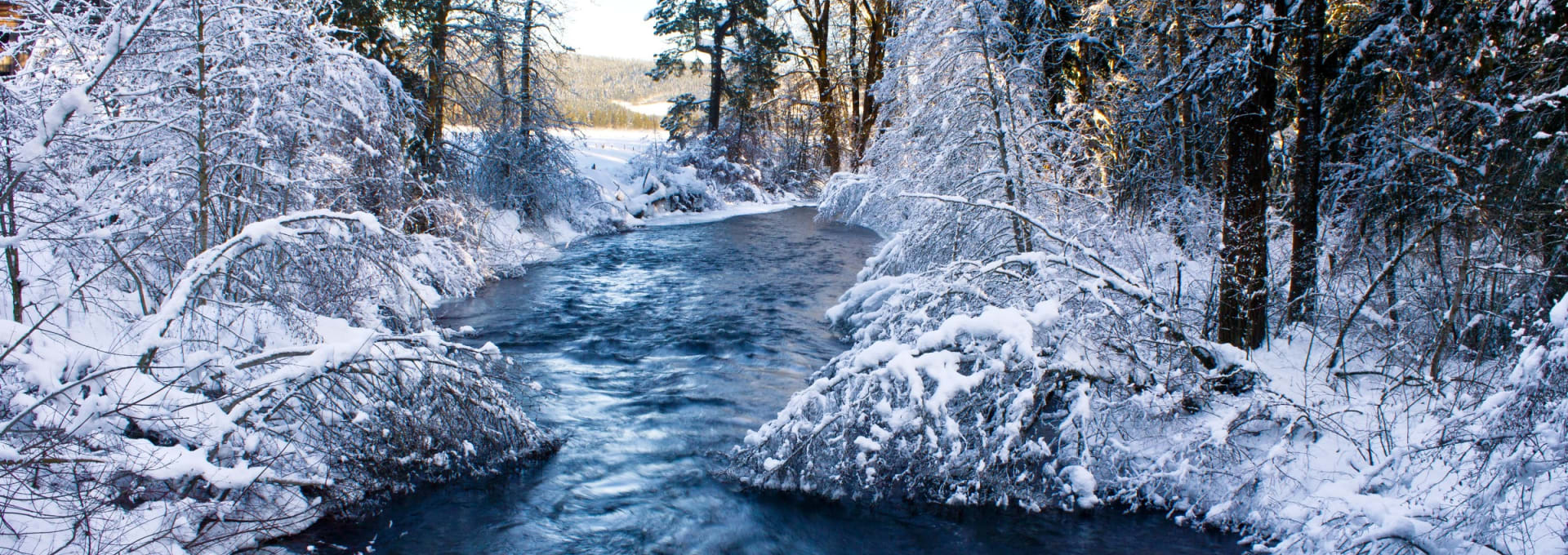 Snowy-TroutCreek_headerCrop_6631-w1920.jpg