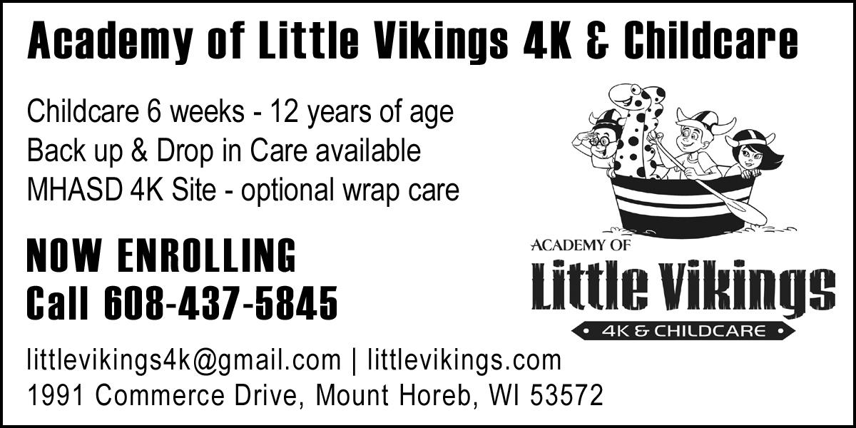 Little-Vikings-2018.jpg