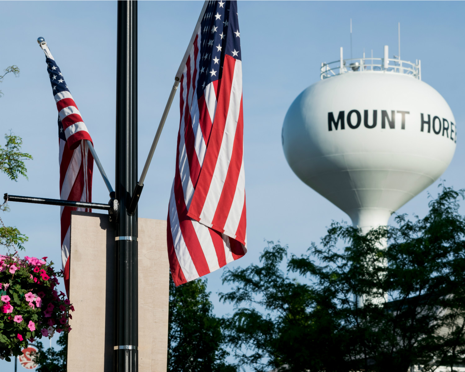 Mount Horeb Water Tower and Flags