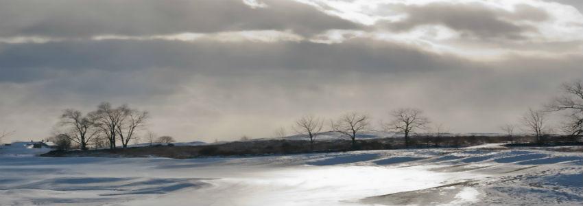 SnowWinter.jpg