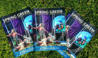 Spring Green Area Guide