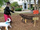 2013Scarecrows003.jpg