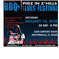 Chamber Fun: 2020 Pigz in Z'Hills BBQ & Blues