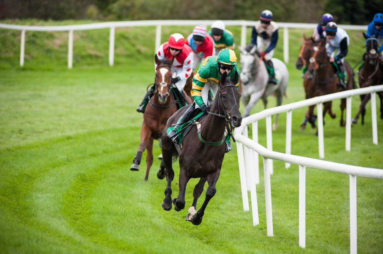 horseraceturningthecorner.jpg