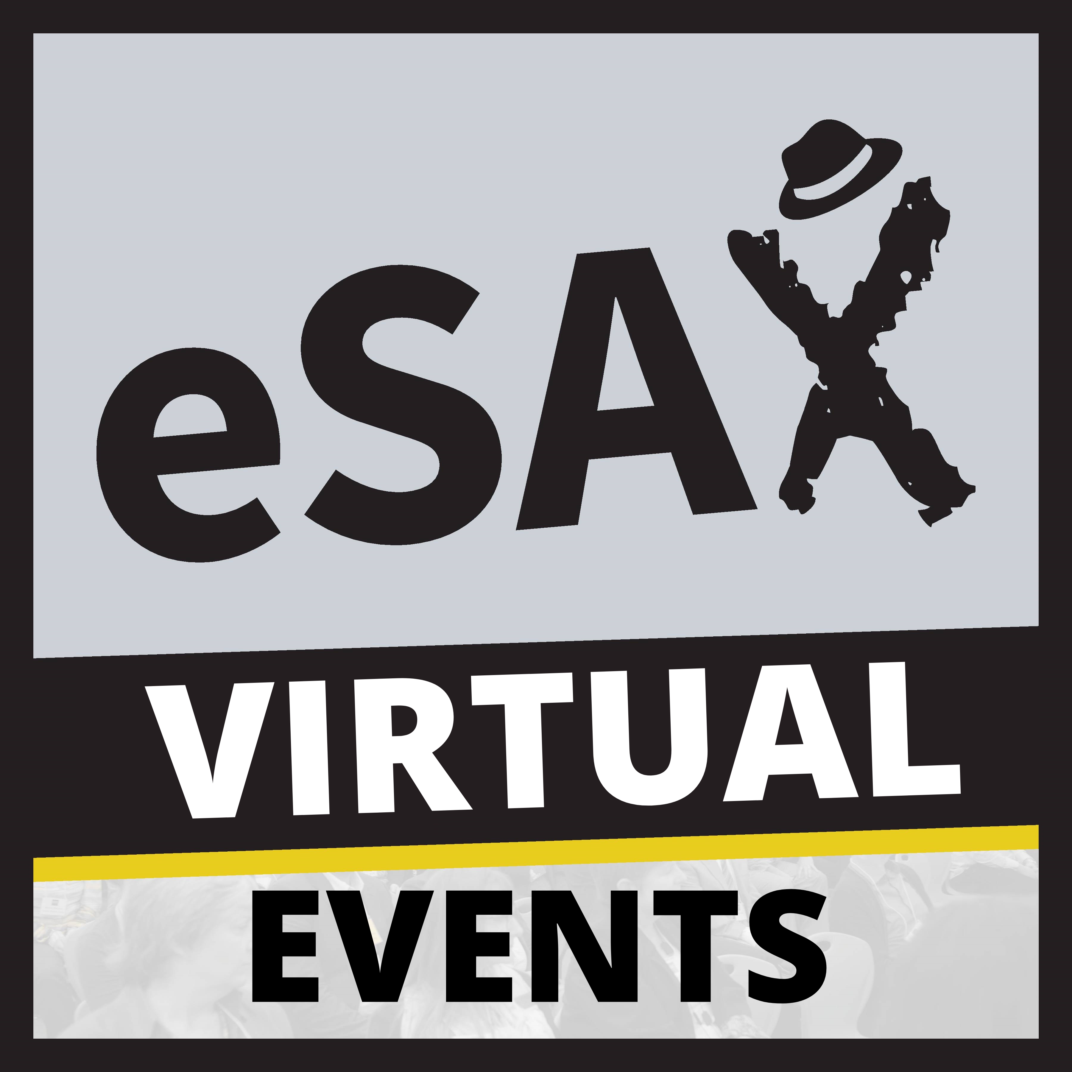 Thank you to eSAX Virtual Events for sponsoring our networking platform for the evening, Remo!