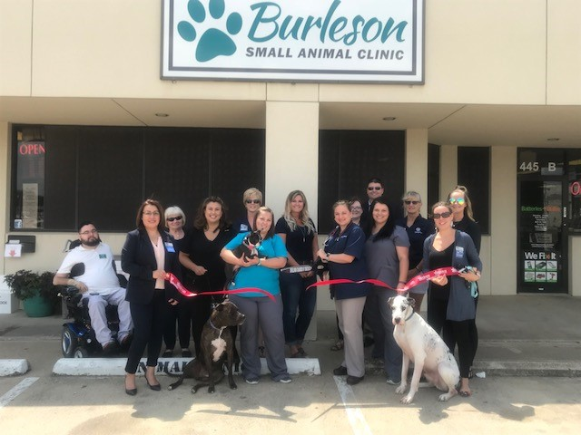 7.12.18---Burleson-Small-Animal-Clinic.jpg