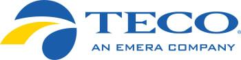 TECO-logo-w350.jpg