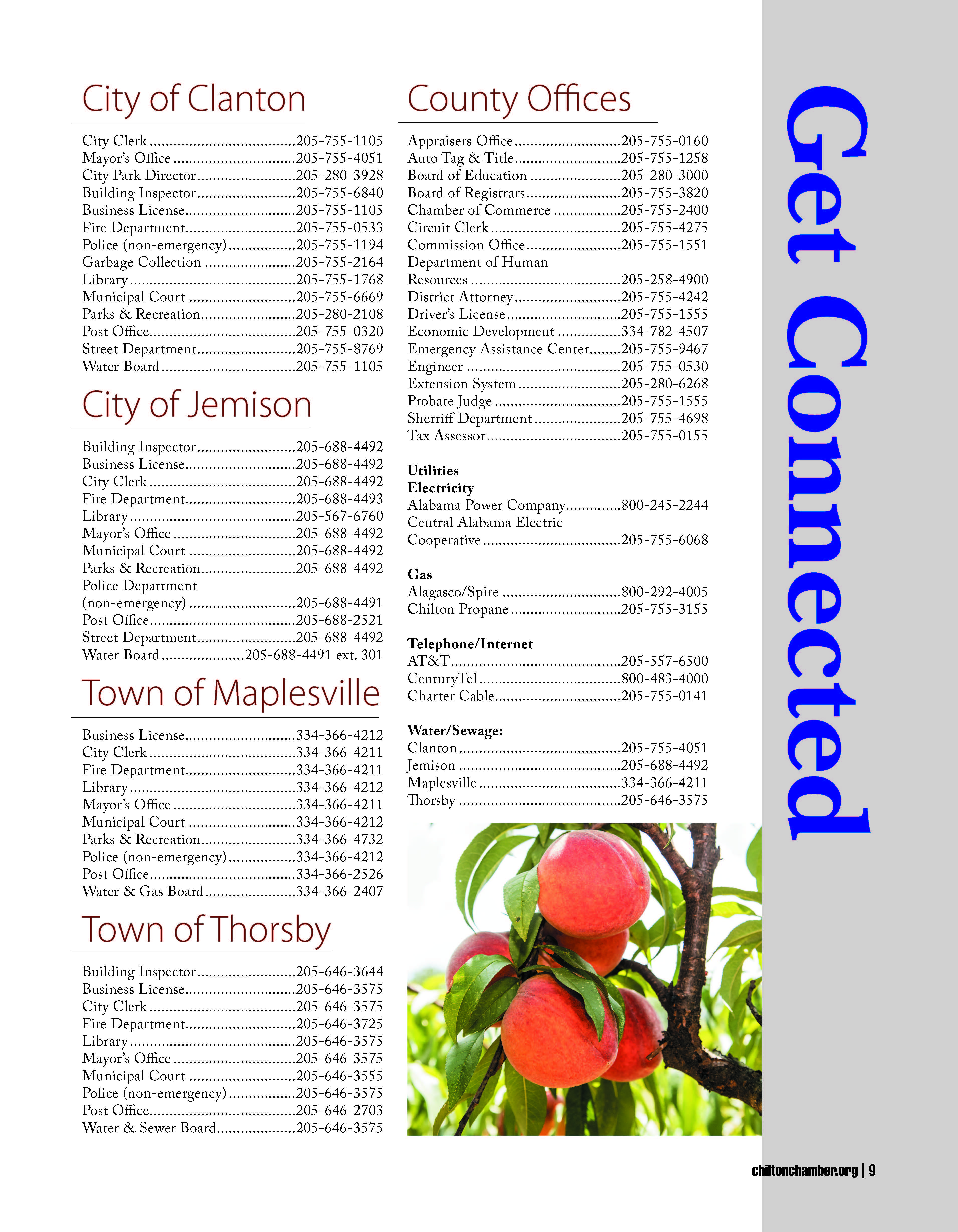 Chamber-Directory-2021-FINAL_Page_09.jpg