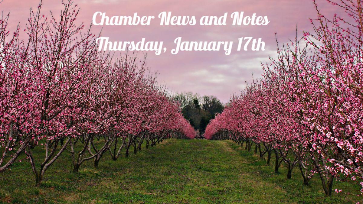 ChamberNewsandNotes.jpg