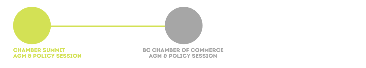 Kamloops Chamber of Commerce Policy Advocacy Tracker