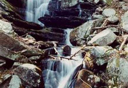 Erving Briggs Brook Falls