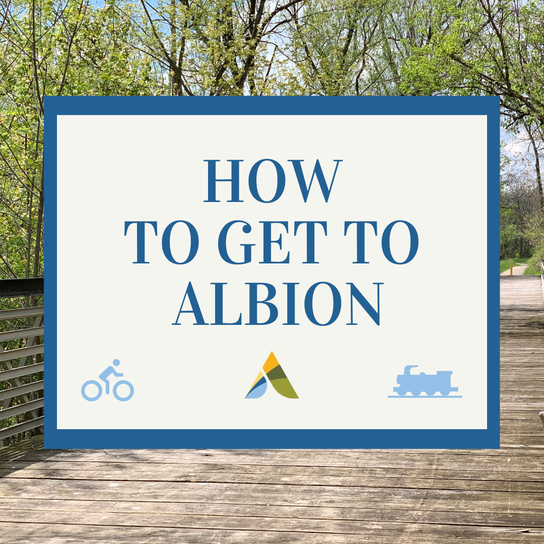 Copy-of-How-to-get-to-Albion.png