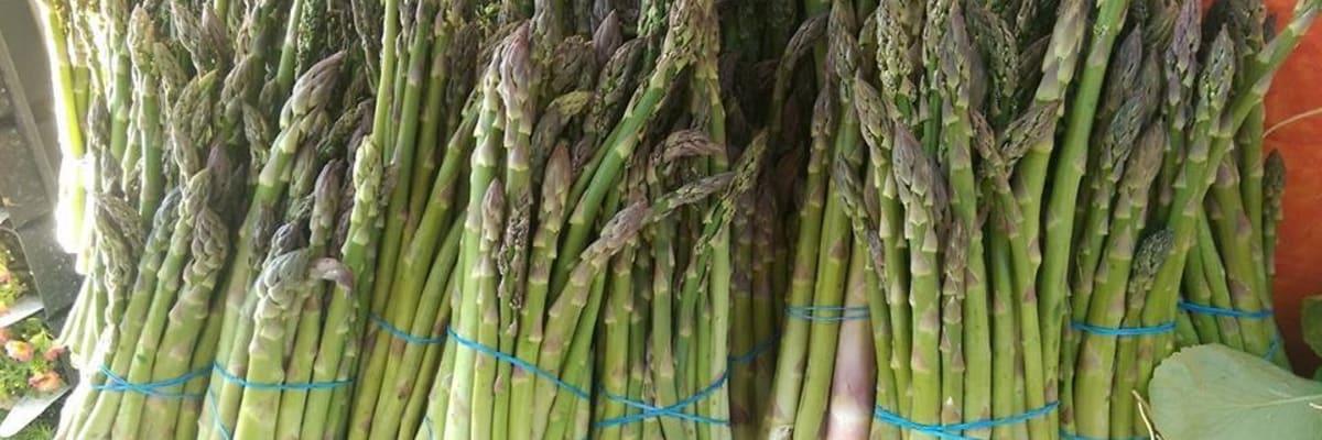 asparagus-horz-w1200.jpg