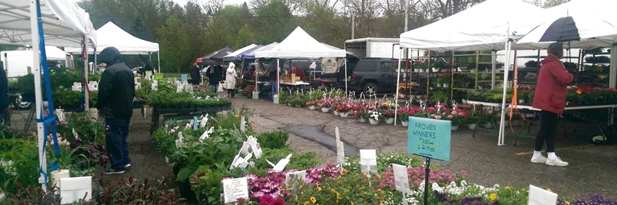 market-flowers-rain-w1200.jpg