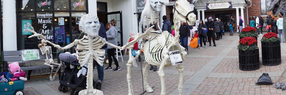 2019-skeleton.jpg