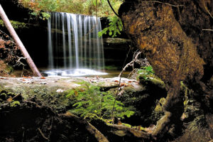 waterfall-Bankhead.jpg