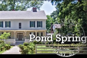 Pond-spring.png