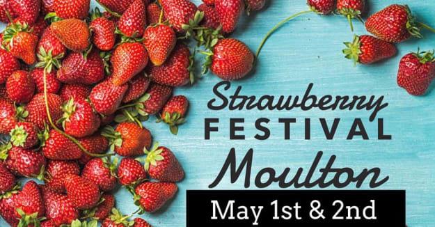 Strawberry-Festival-2-w625.jpg