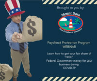 Chamber Webinar on Paycheck Protection Program (PPP)